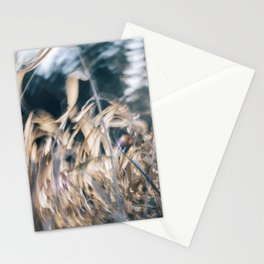 A Whole New Whirl Stationery Cards