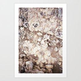 Iceland texture ii Art Print