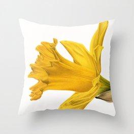 Herald Of Spring Throw Pillow