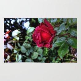 Red Velvet Rose Rug