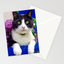Orazio charming cat in the blue Stationery Cards