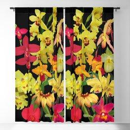Orchids - Hot Colors! Blackout Curtain