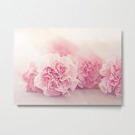Pale Pink Carnations 4 Metal Print