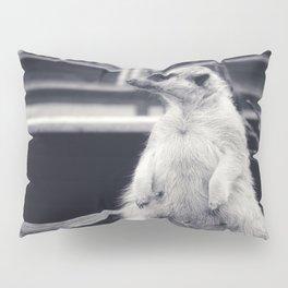 The Observent Meerkat Pillow Sham