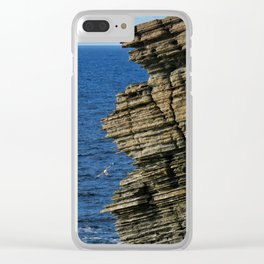 Sea Birds Off the Cliffs Clear iPhone Case