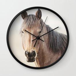 Horse Photograph, Soft Color Wall Clock
