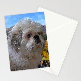 Denali - Loyal Lap-Dog Stationery Cards