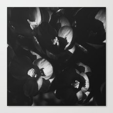BLACK DIARY Canvas Print