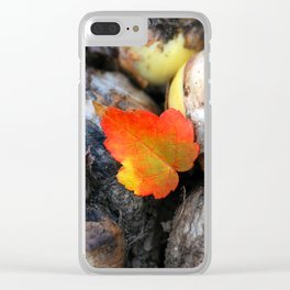 One And Only Clear iPhone Case