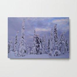 The Winter Wonderland Metal Print