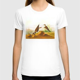 Ring Plover Bird T-shirt