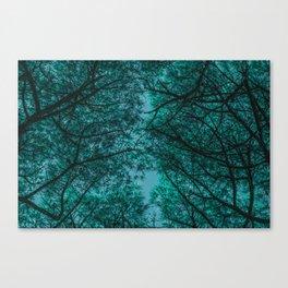 TREE 4.2 Canvas Print