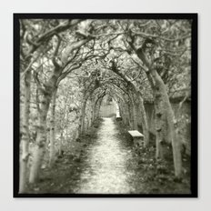 The Beckoning of the Bough Canvas Print
