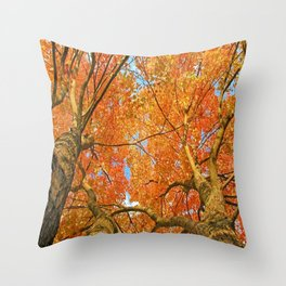 Majestic Fall Trees Throw Pillow