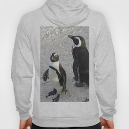 Two African Penguins Boulders Beach, Cape Town, South Africa Hoody
