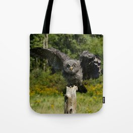 Baby Great Gray Owl Tote Bag