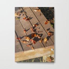 Nantucket Autumn #10 Metal Print