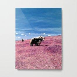 Pink Yack Metal Print