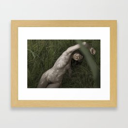 _DSC3862 Framed Art Print