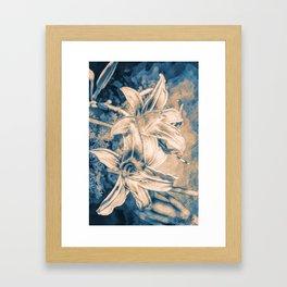 Blue Velvets Framed Art Print