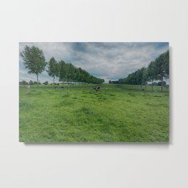 cow heaven Metal Print
