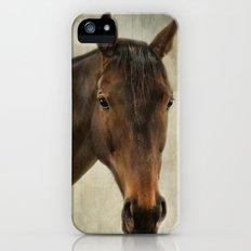 Horse. Slim Case iPhone SE