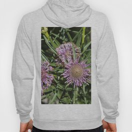Rose Coneflower Hoody
