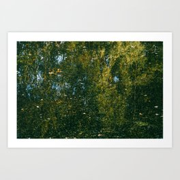 Holme Woods 3 Art Print