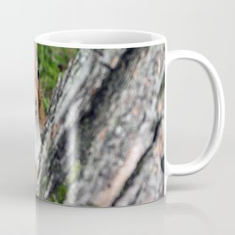 Nature woodland animals smiling squirrel Coffee Mug