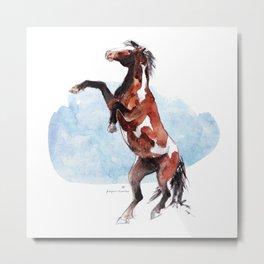 Horse (Wild stallion) Metal Print