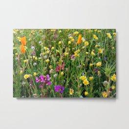 Wildflowering LA I Metal Print