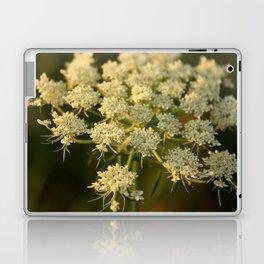 Queen Anne's Lace Flower Laptop & iPad Skin