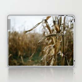 Autumn Cornstalk II Laptop & iPad Skin