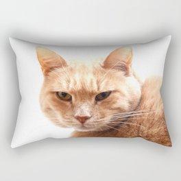 Red cat watching Rectangular Pillow