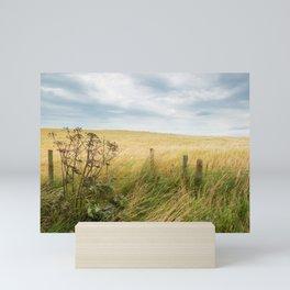 The scottish coast | Scotland | colored travel photography Mini Art Print