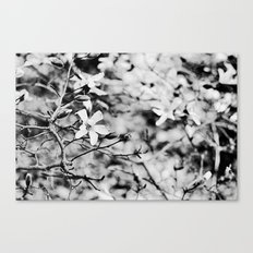 Blooms and Buds Canvas Print