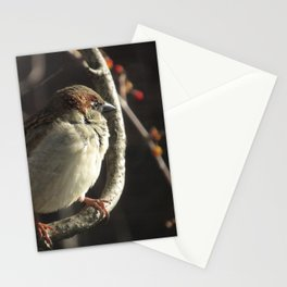 Sun Day Morning Stationery Cards