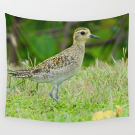 Pacific Golden Plover Wall Tapestry