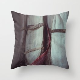 dragon boat Throw Pillow