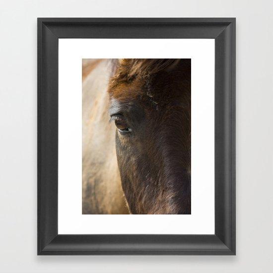One Look Framed Art Print