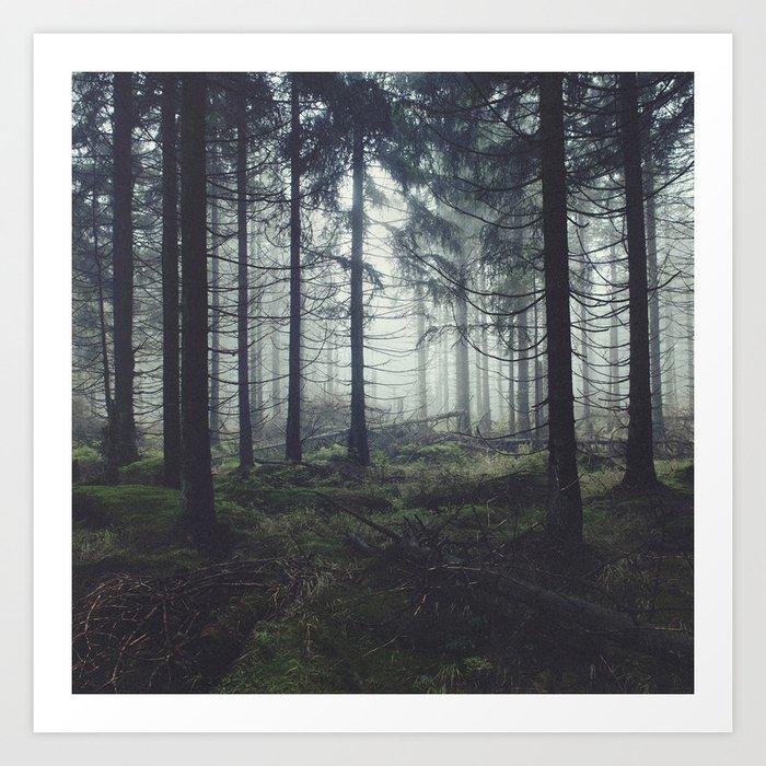 Through The Trees Kunstdrucke
