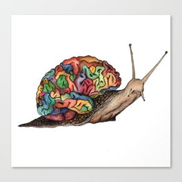 our mind our snail Canvas Print