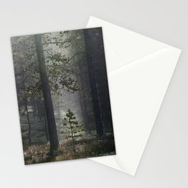 Patience (Norwegian Forest) Stationery Cards