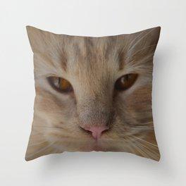 sandy, close up Throw Pillow