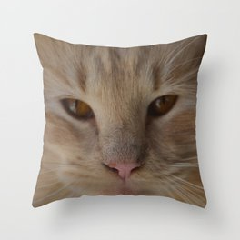 sandy, close up Throw Pillow