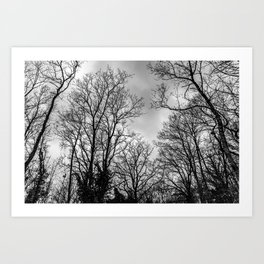 Black and white haunting trees Art Print