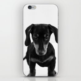 Weenie dog (black and white) iPhone Skin