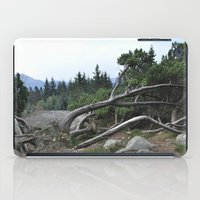nordic iPad Cases featuring Nordic by silviadevries