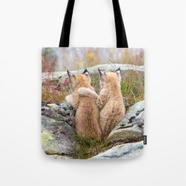 Lynx kittens - sister love Tote Bag