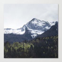 Winter and Spring - green trees and snowy mountains Canvas Print